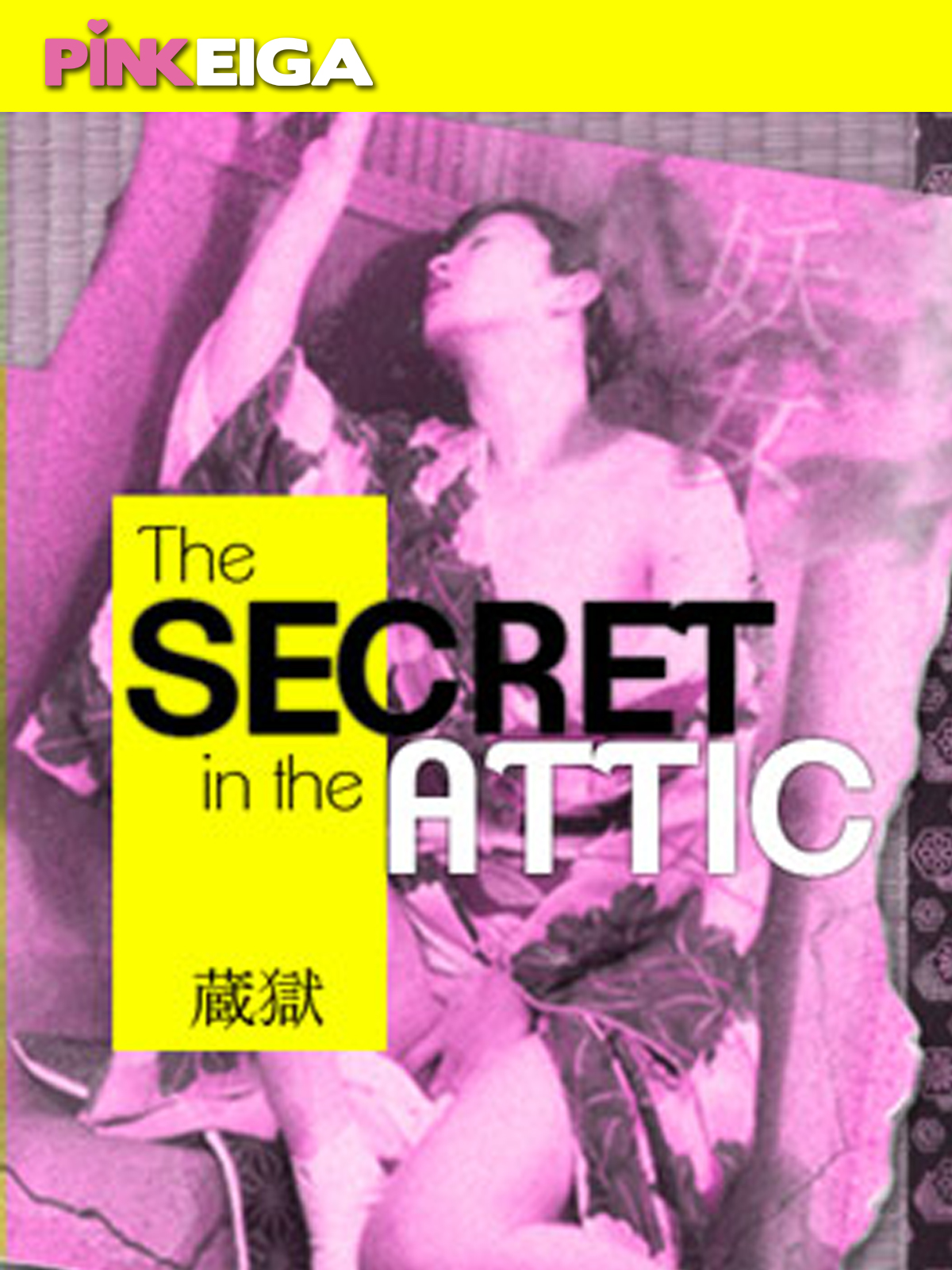 Secret in the Attic  -SD- DOWNLOAD TO OWN