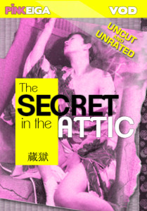 The Secret In the Attic Box art