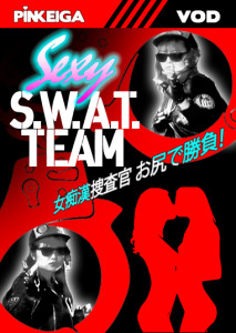 Sexy_SWAT_Team box cover