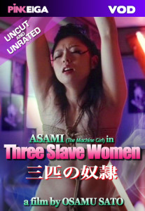 Three Slave Women Box Art